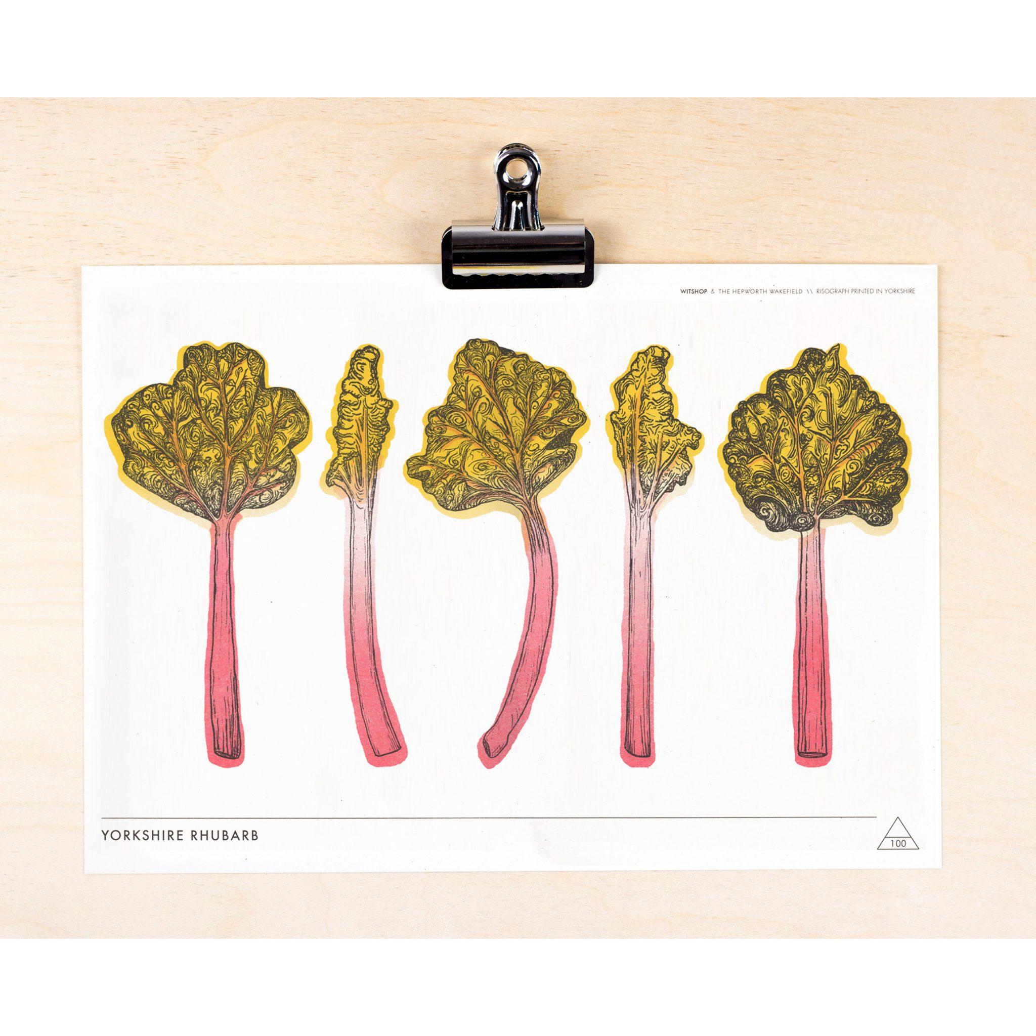 Yorkshire Rhubarb Print 1